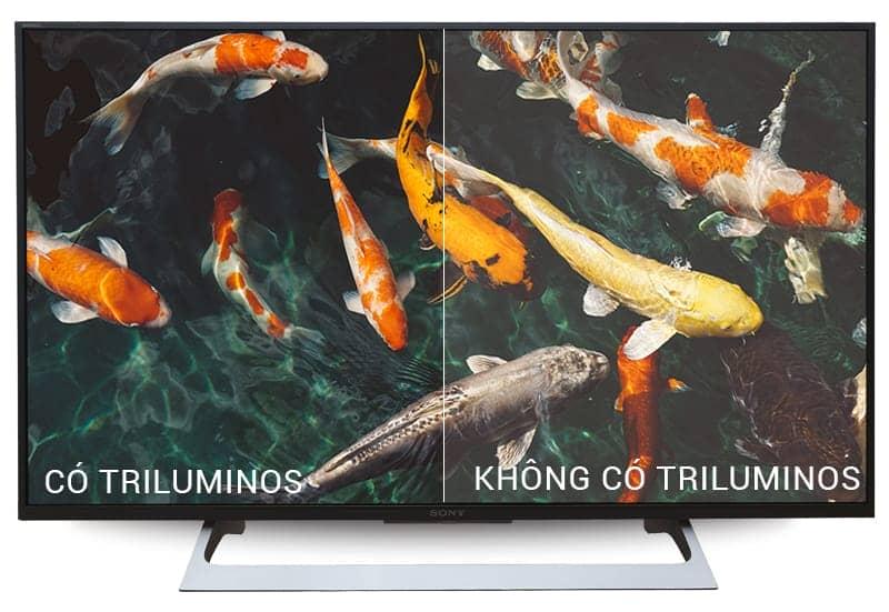 công nghệ hình ảnh của tivi KD-55X8000E