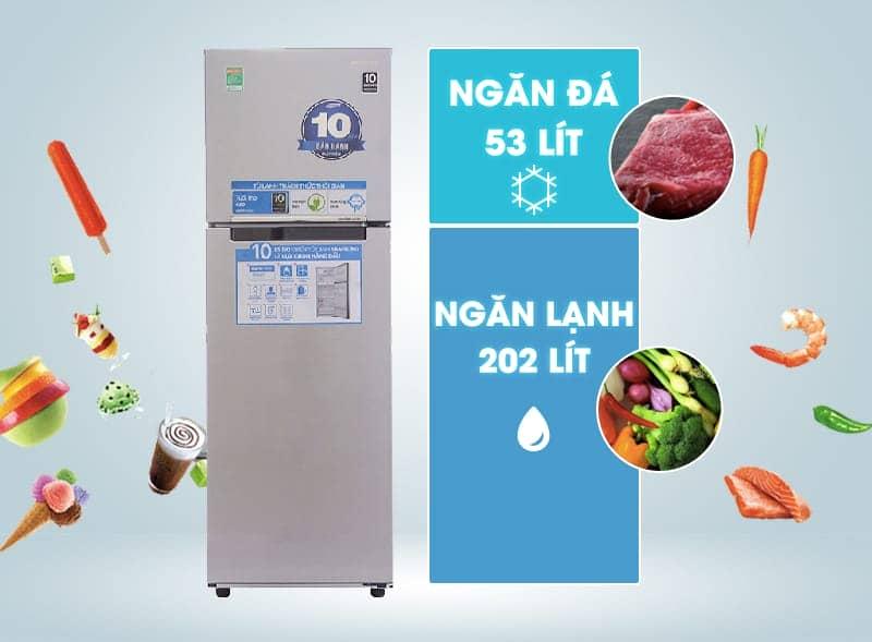 dung tích tủ lạnh RT25HAR4DSA/SV