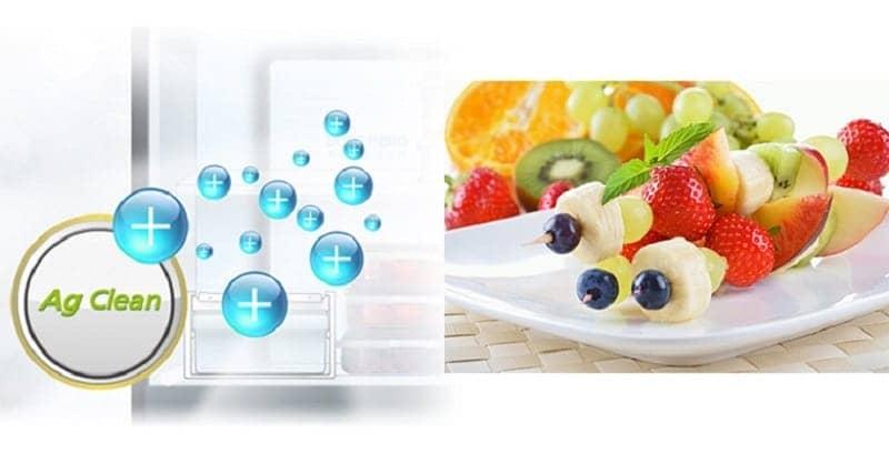 Tủ lạnh Panasonic 255 lít NR-BV289XSVN phân tử bạc kháng khuẩn.