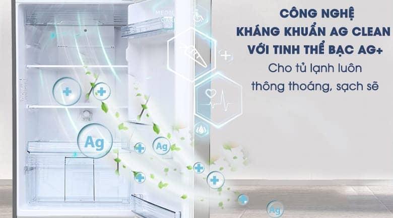 Tủ lạnh Panasonic inverter 267 lít NR-BL308PSVN Công nghệ bạc kháng khuẩn